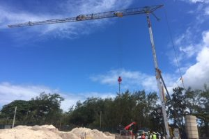 Self Erecting Tower Cranes in Mauritius